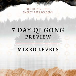 Online Qi Gong Course - Mixed Levels Preview
