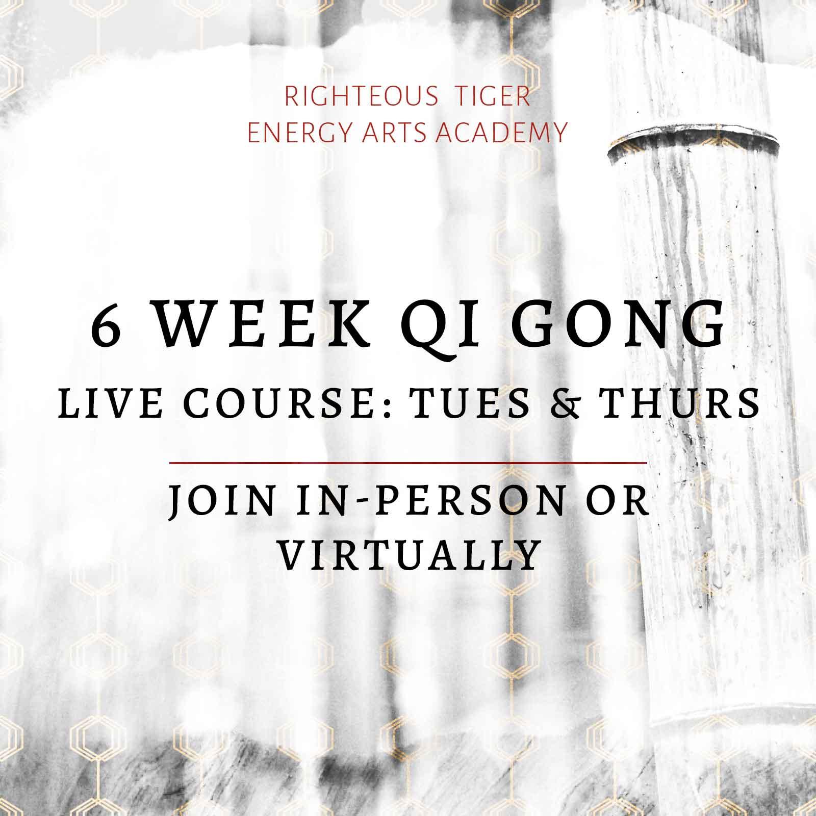 live qi gong course columbia south carolina