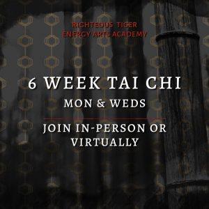 tai chi course columbia sc - 6 weeks live in studio or virtual class